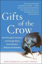 giftsofthecrow