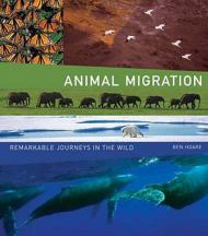 animalmigration