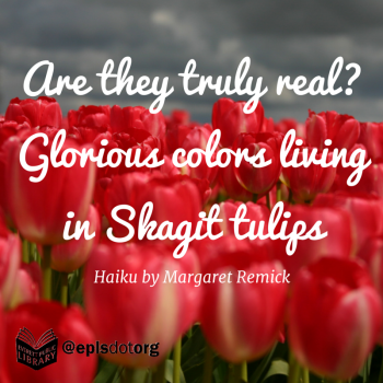Are they truly real-Glorious colors livingin Skagit tulips (1)